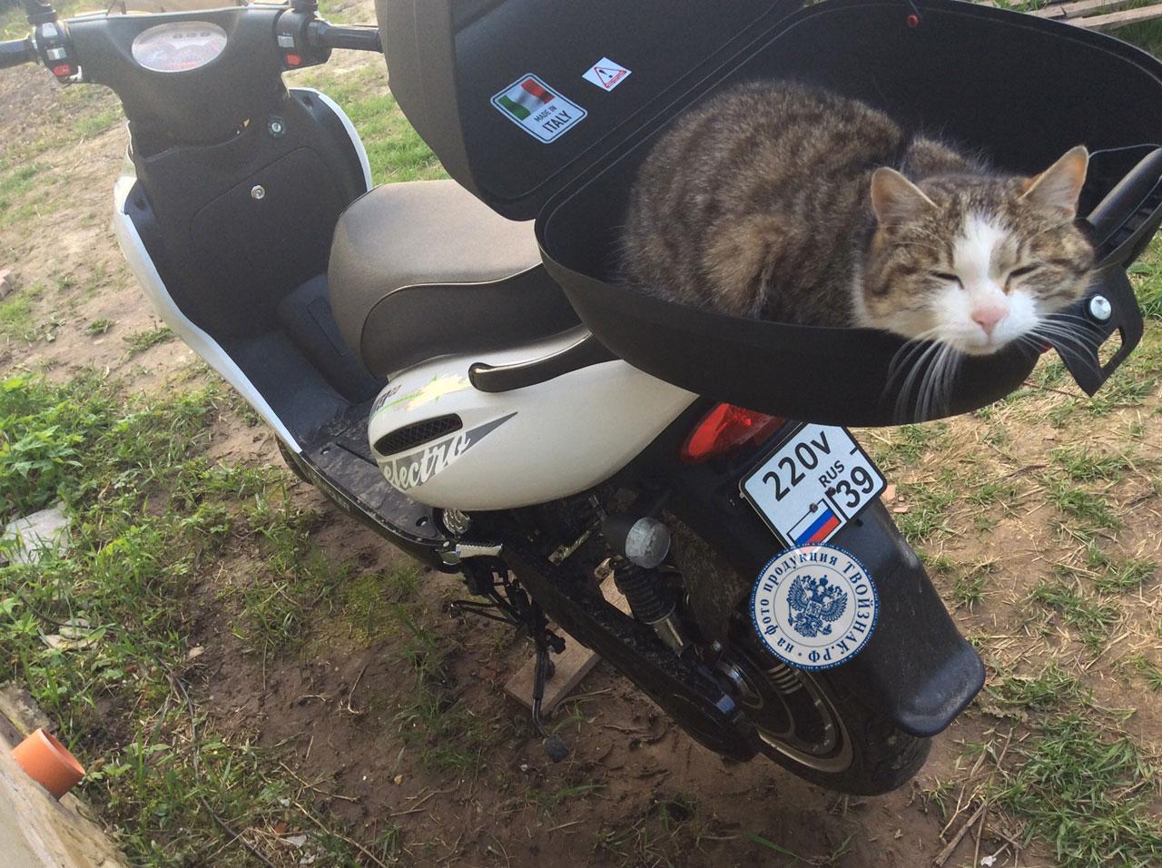 номер на скутер